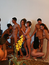 What do you get when you mix handsome, horny, and hung homey's with some lovely, loose, and lustful ladies? An Orgy Sex Party of course! And this episode features nothing less than the best of both groups getting down and dirty in our sleek and stylish Miami penthouse.