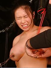 Asian Tears